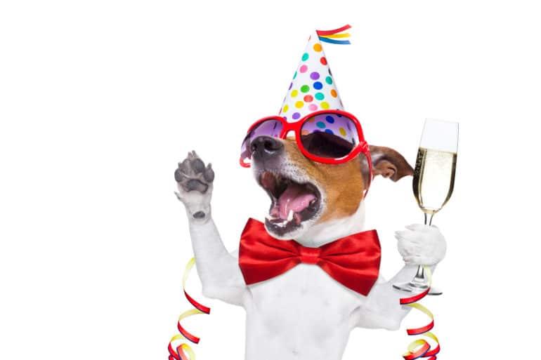 mapp acquired Webtrekk celebration
