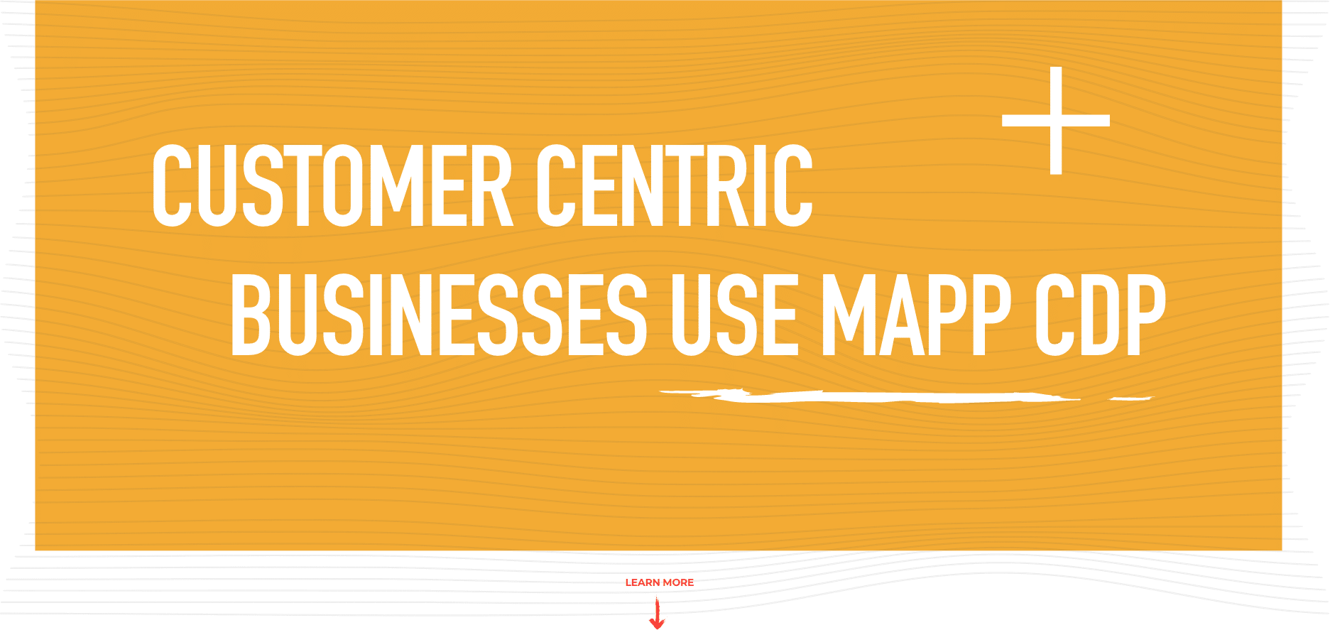 Customer Centric Businesses Use Mapp CDP